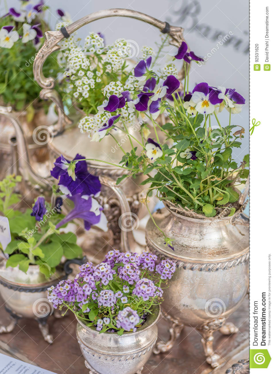 Silver Tea Set Used As Planters With Purple And White Flowers Stock