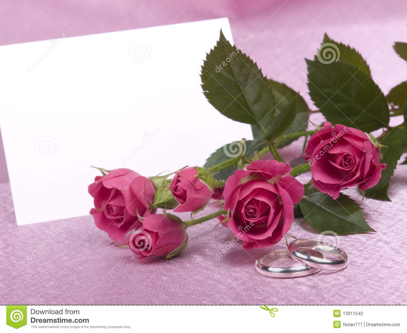 Silver Wedding Rings, Card And Roses Stock Photo