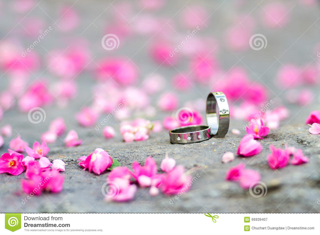 Silver Wedding Rings And Pink Flowers On The Stone Background Stock ...