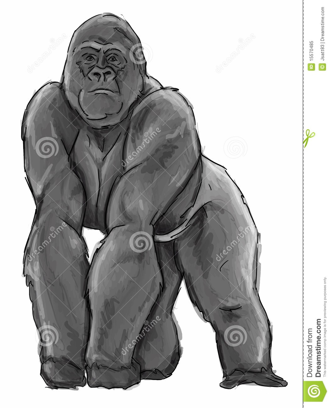 Silverback Gorilla Illustration Royalty Free Stock Photo ...