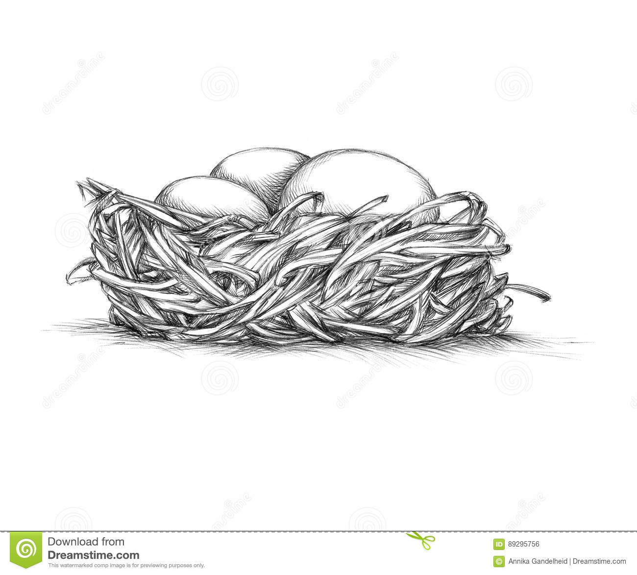 simple bird nest from the front stock illustration image 89295756