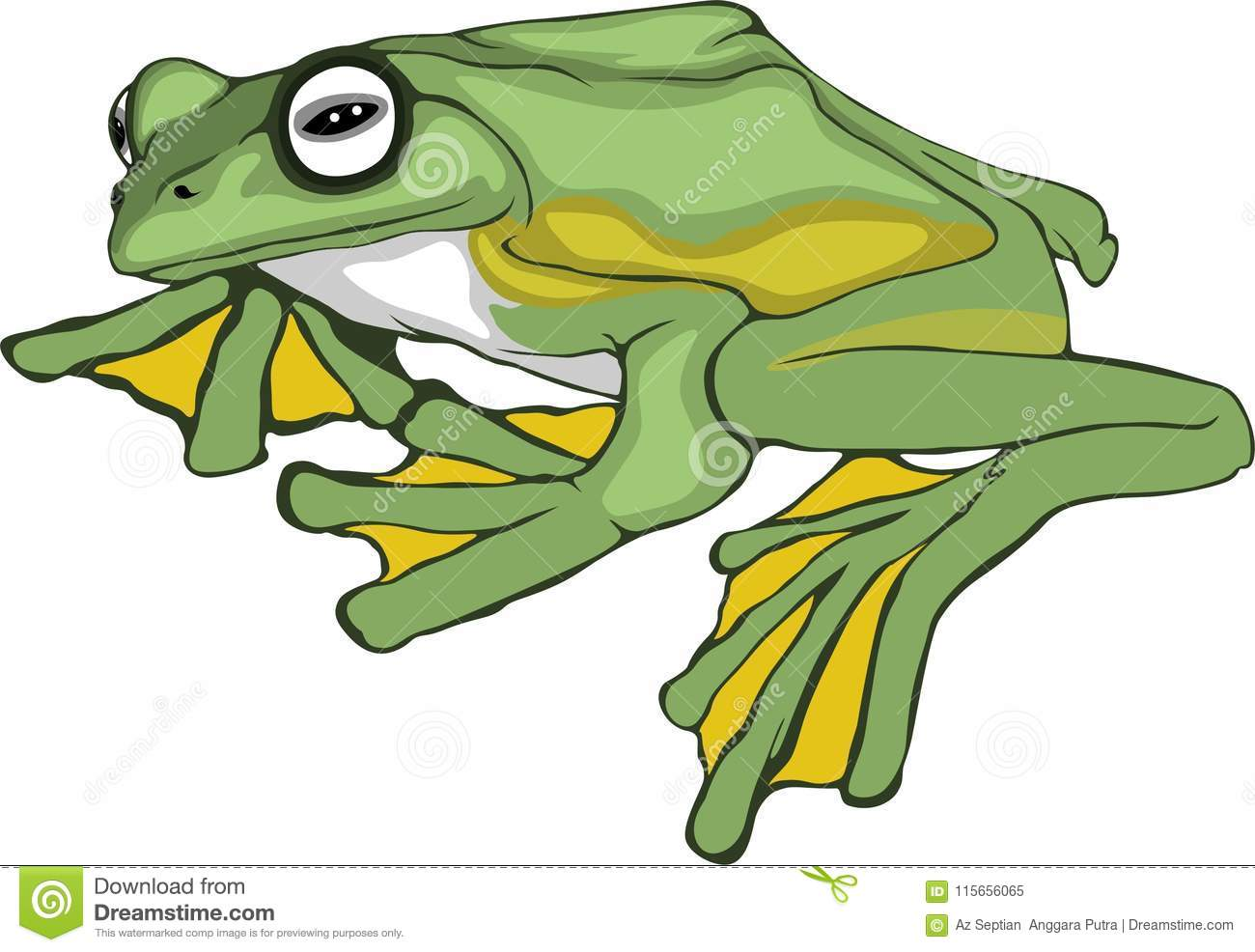 Simple Draw Frog Stock Vector Illustration Of Solution