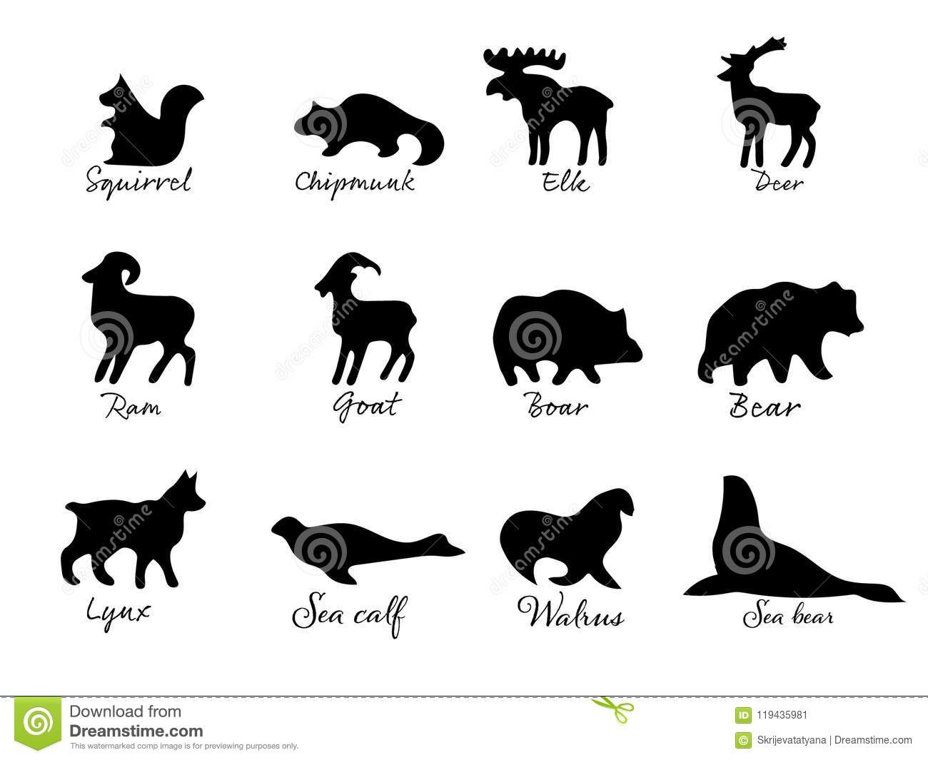Simple Drawing Various Animals Silhouettes Stock Vector ...