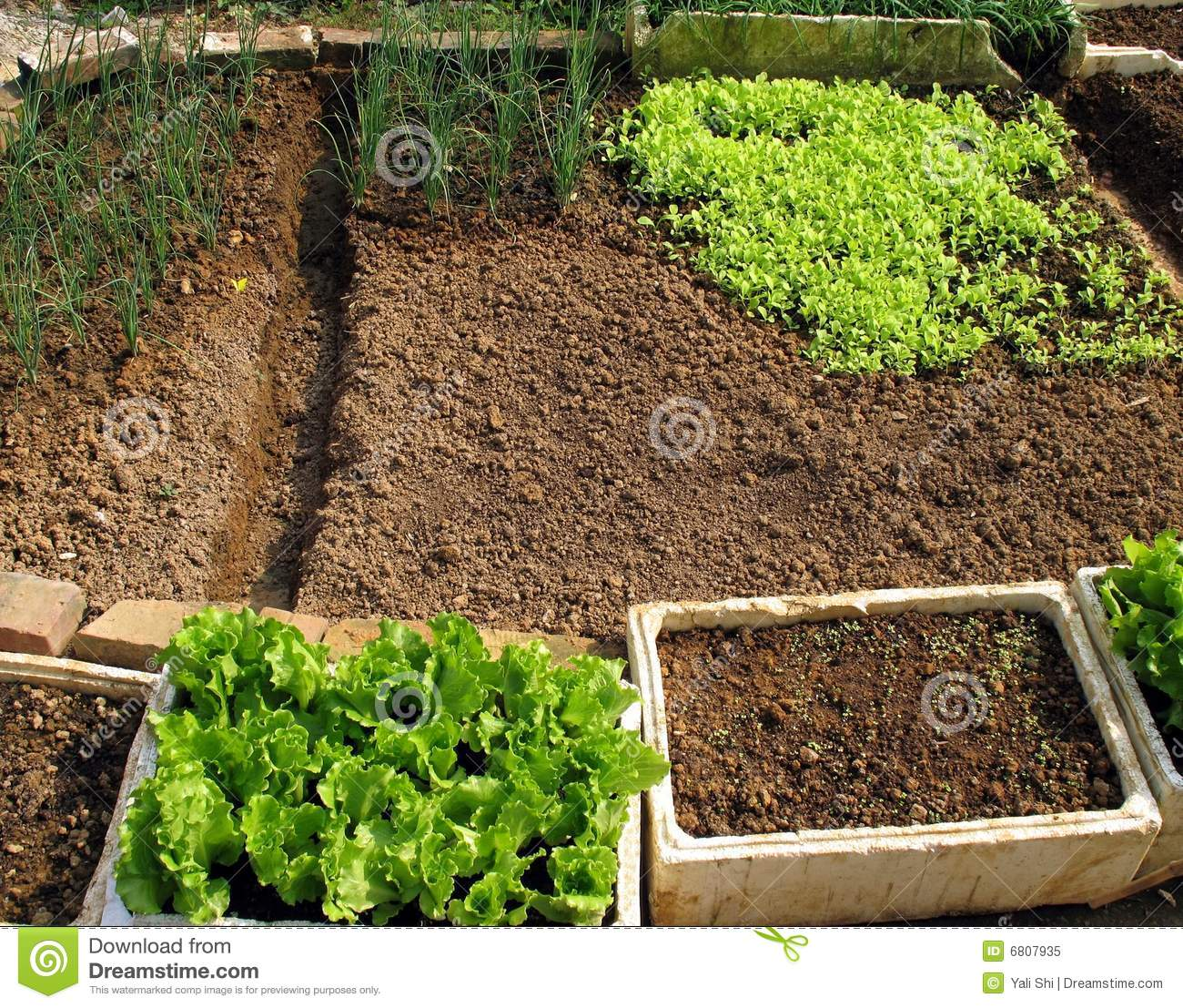 Simple Garden stock image. Image of agriculture, boxes - 6807935