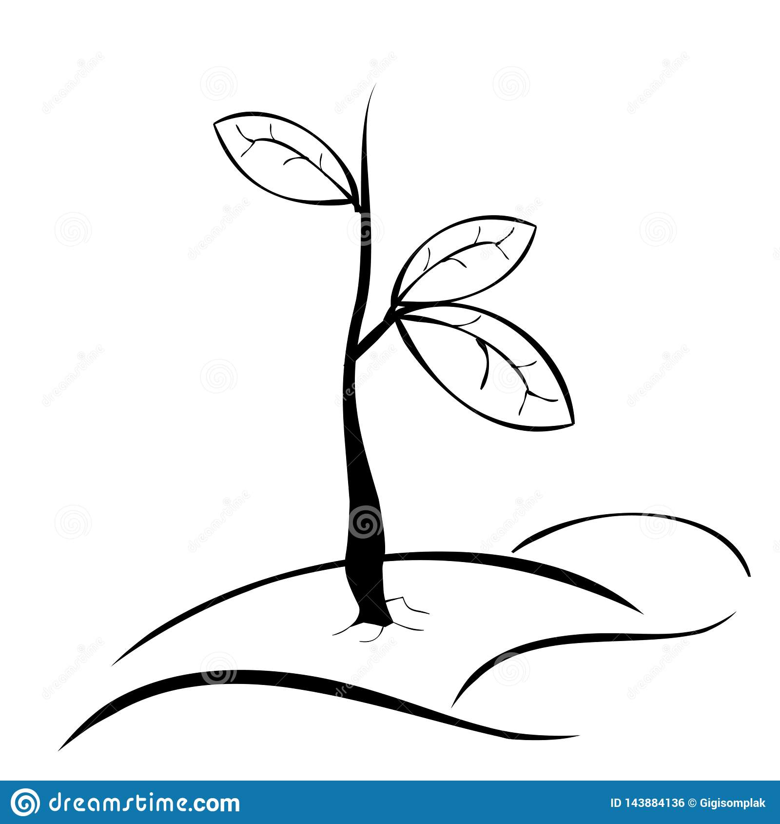 Simple Hand Draw Sketch Black And White Small Plant With Three Leaf Stock Vector Illustration Of Wildlife Vector 143884136