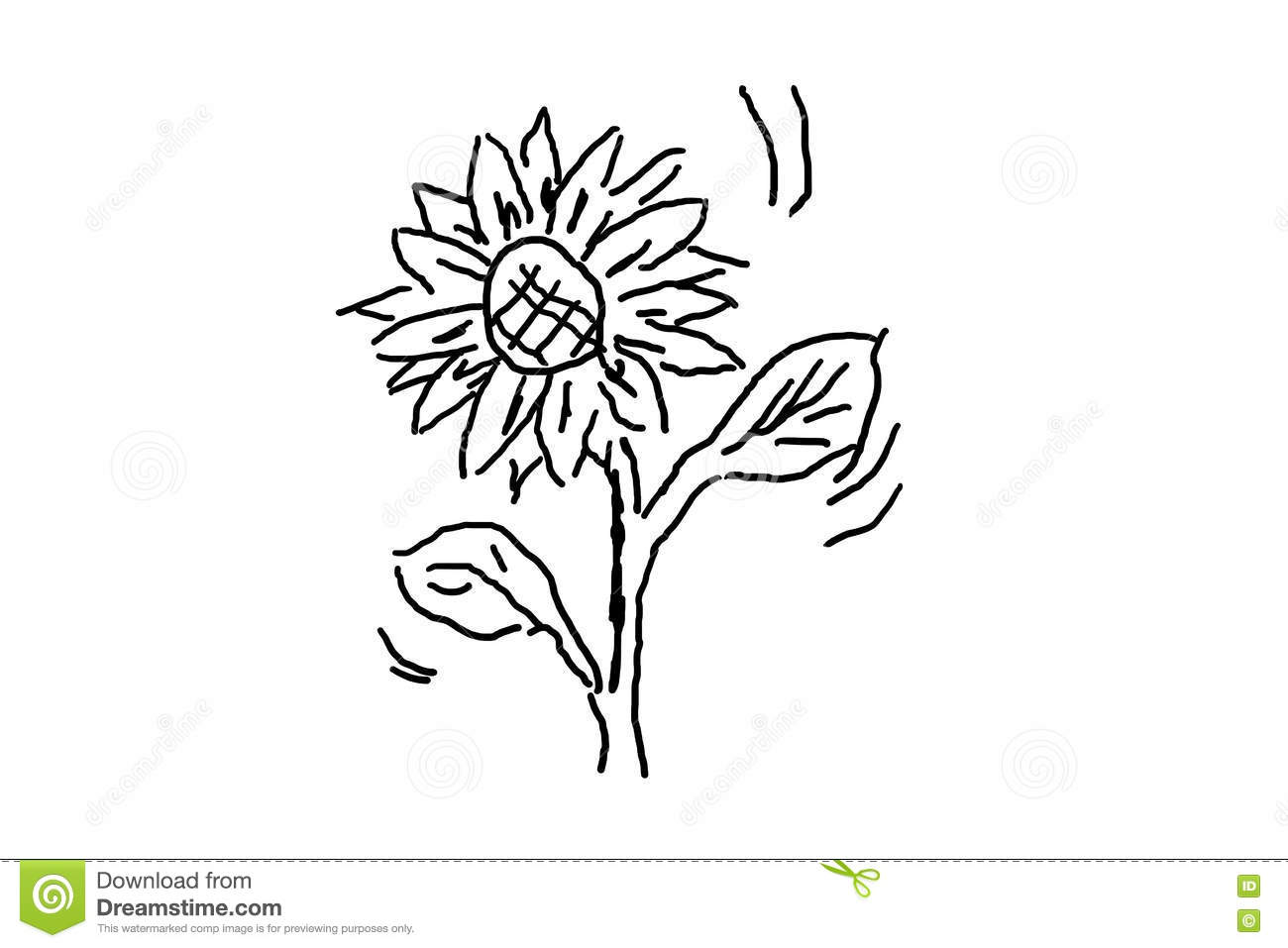 Cartoon Flower Line Drawing : Simple hand drawing a flower stock illustration image
