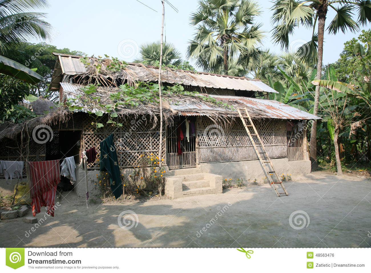 Simple house in bengali village editorial photo image of for Simple village house design picture