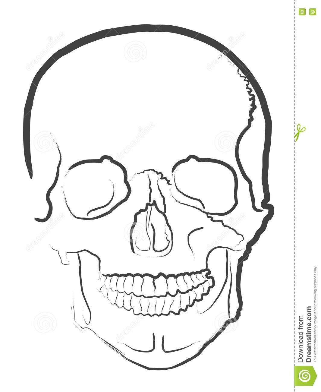 Stock Photography: Simple skull vector. Image: 14557702