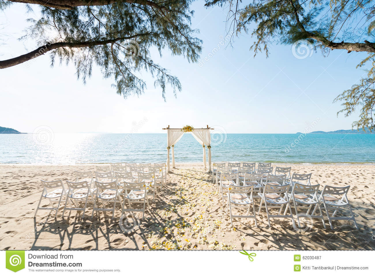 Simple style wedding arch and decoration stock image image of simple style wedding arch and decoration junglespirit Image collections