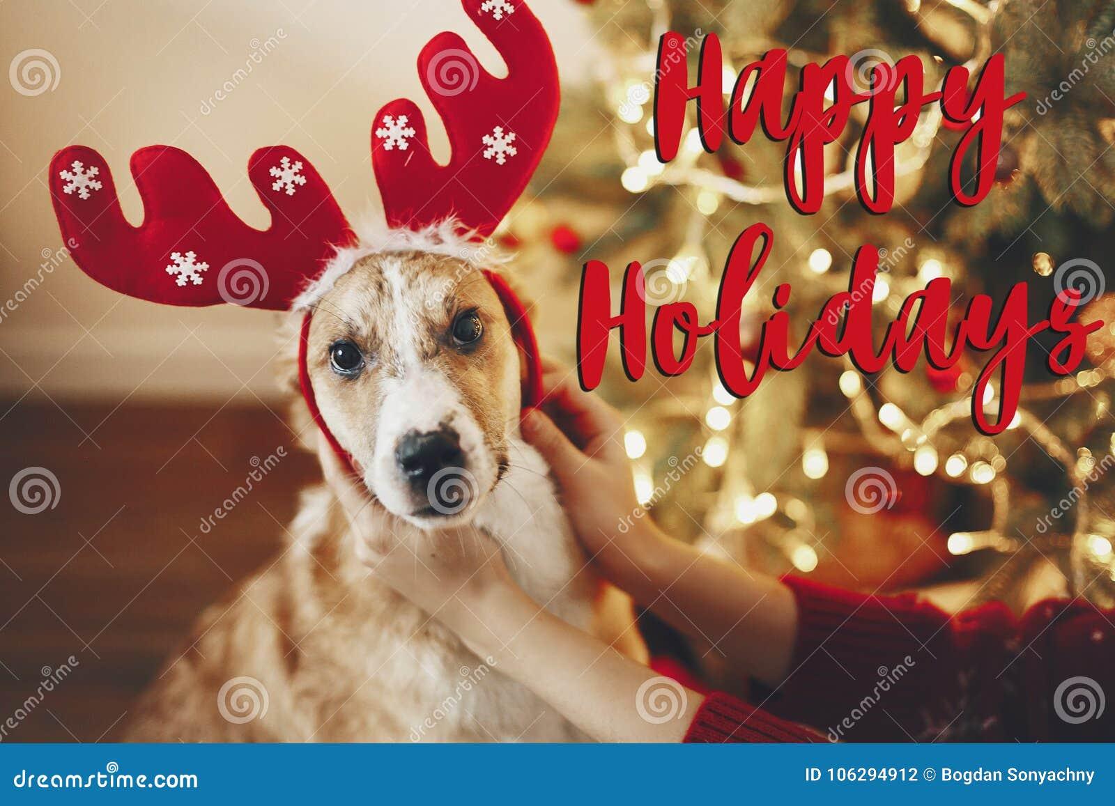 Simsen Sie frohe Feiertage, Jahreszeitgrüße, frohe Weihnachten und happ