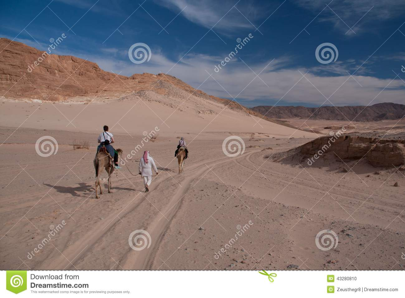 Sinai desert with sand and sun under blue sky in december with p