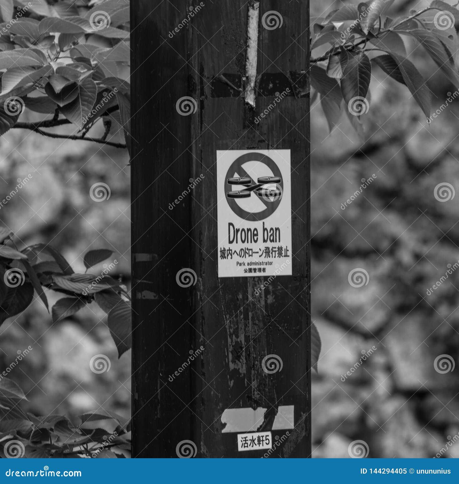 Sinal com 'a rotulação da proibição do zangão ', escrita em palavras inglesas e japonesas