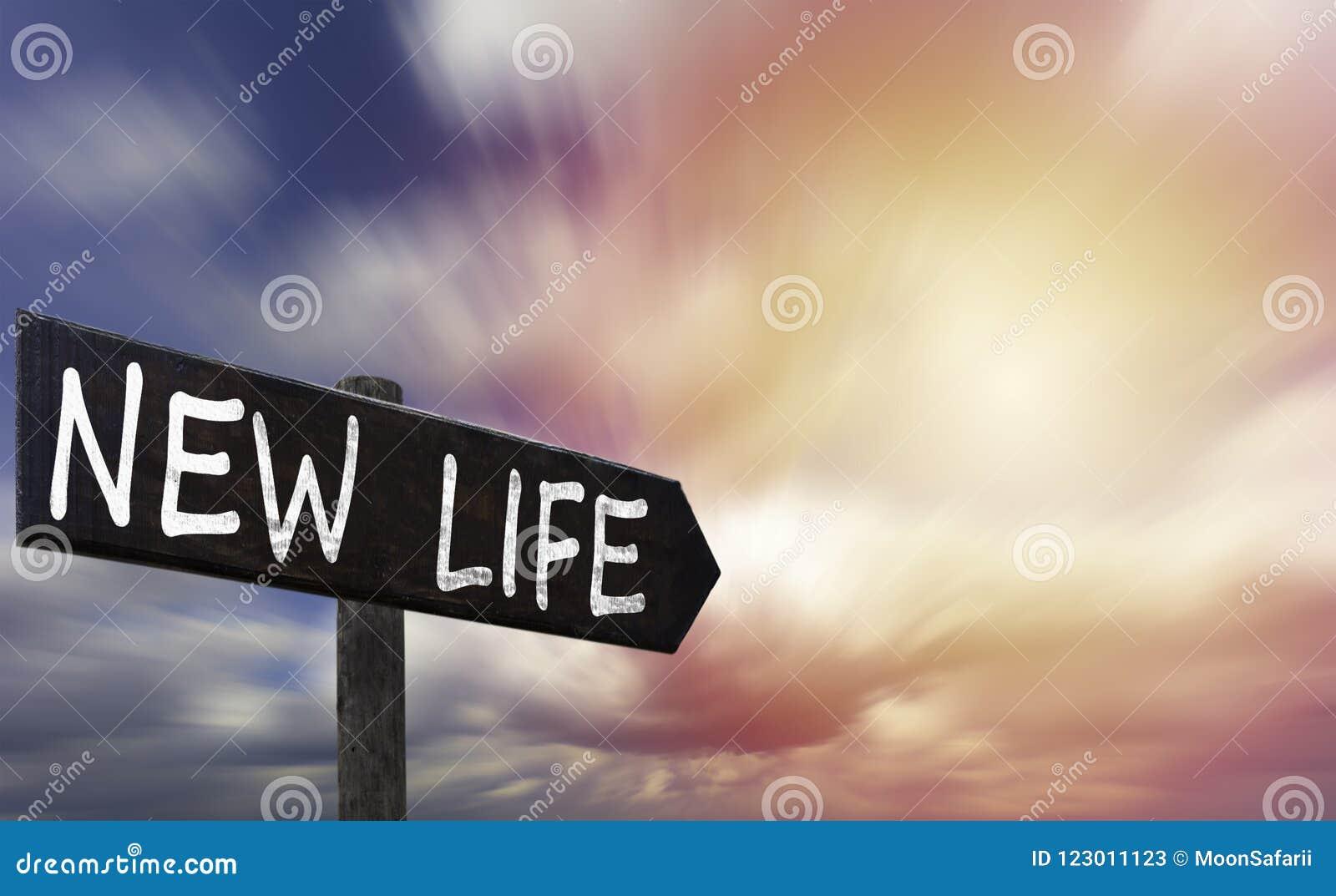 Sinal De Madeira De Arrowed Da Vida Nova Contra O Céu Imagem De