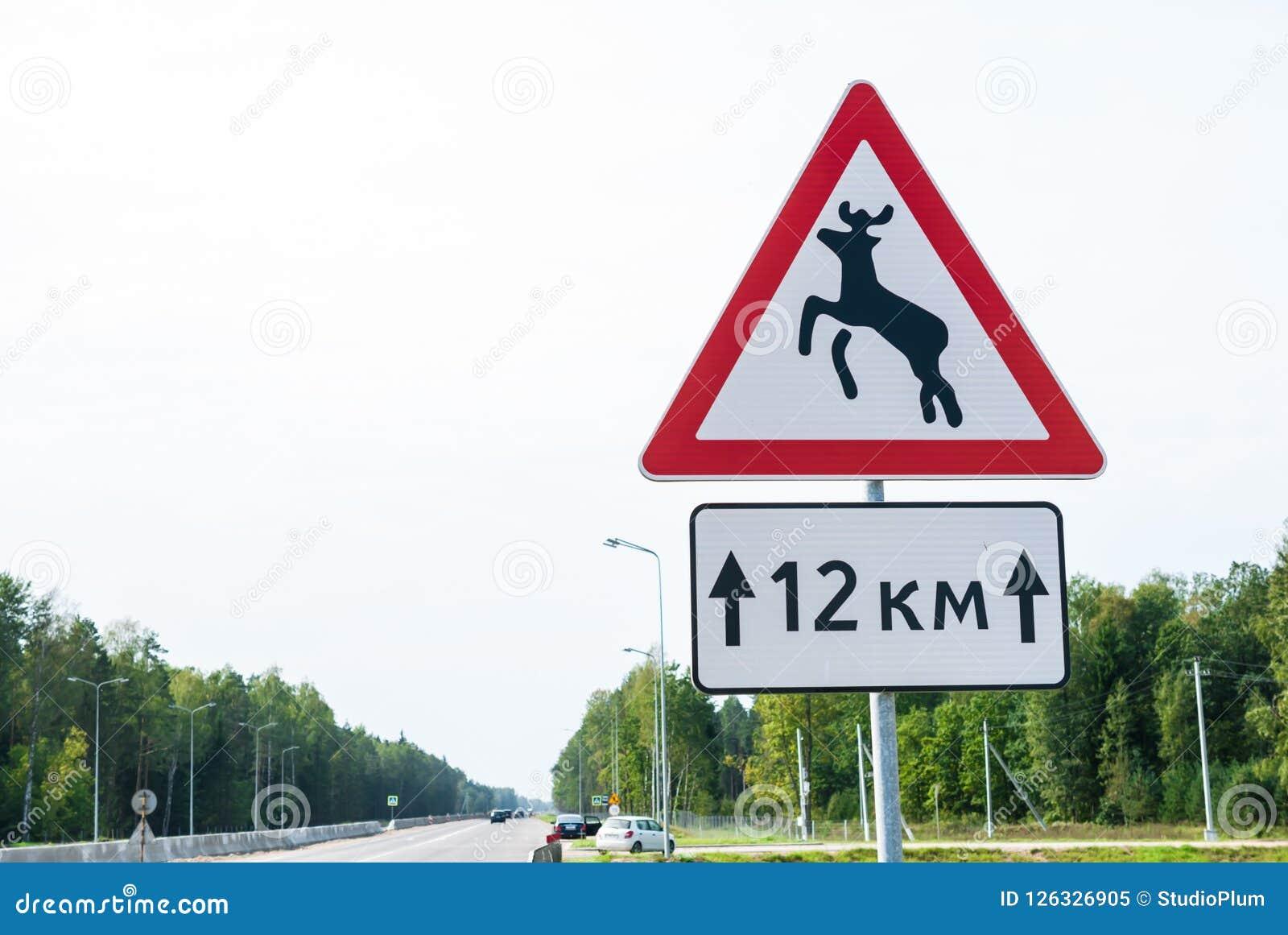 Sinal de tráfego do perigo, animais selvagens