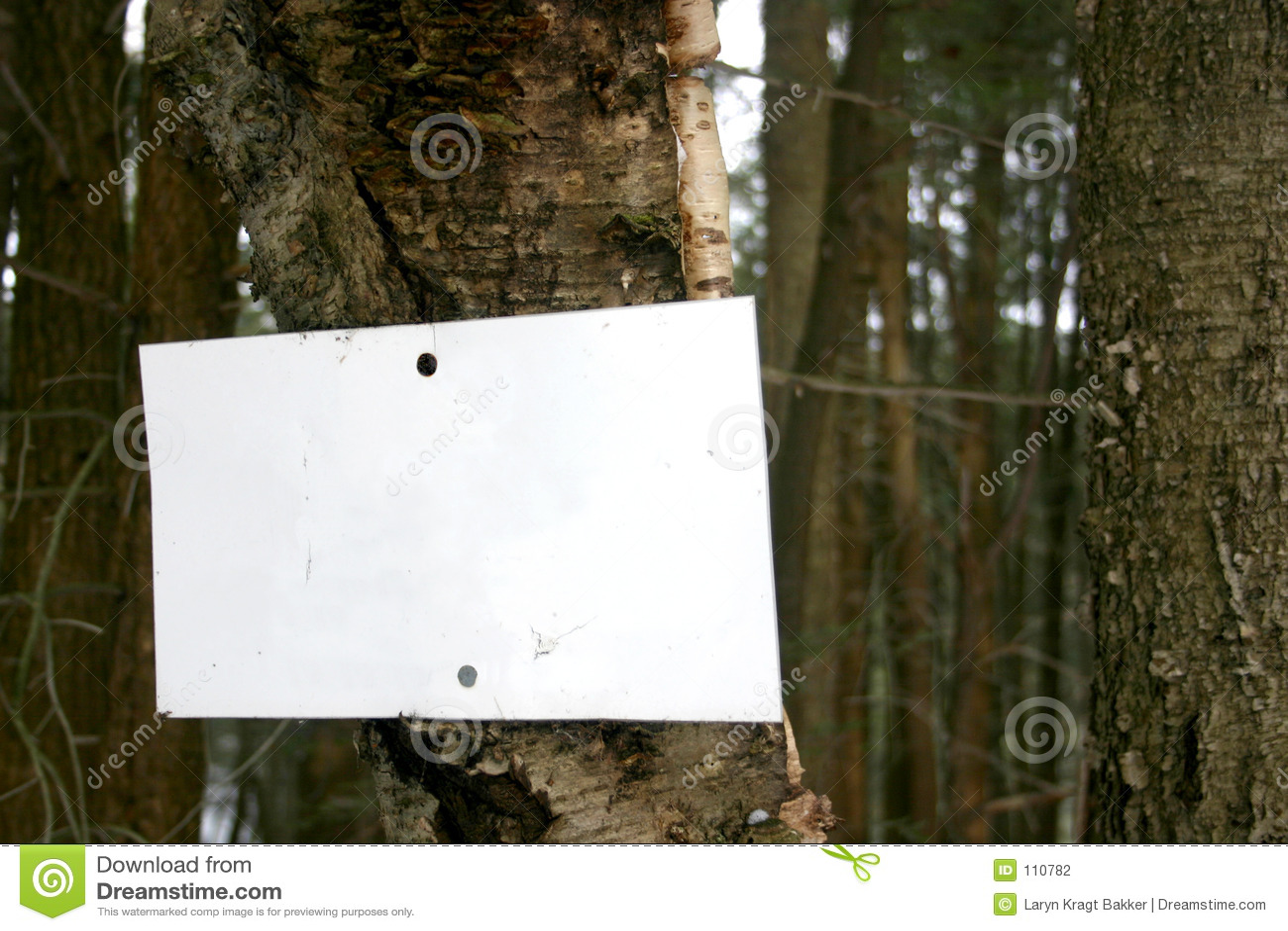 Sinal em branco na árvore