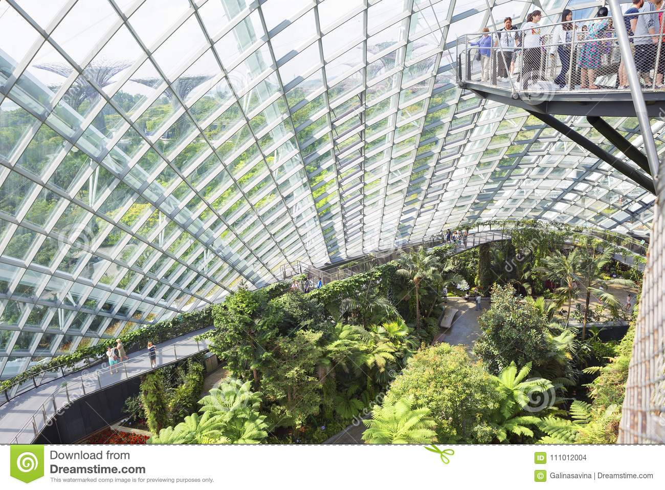 Singapore conservatories: flower dome and cloud forest. editorial