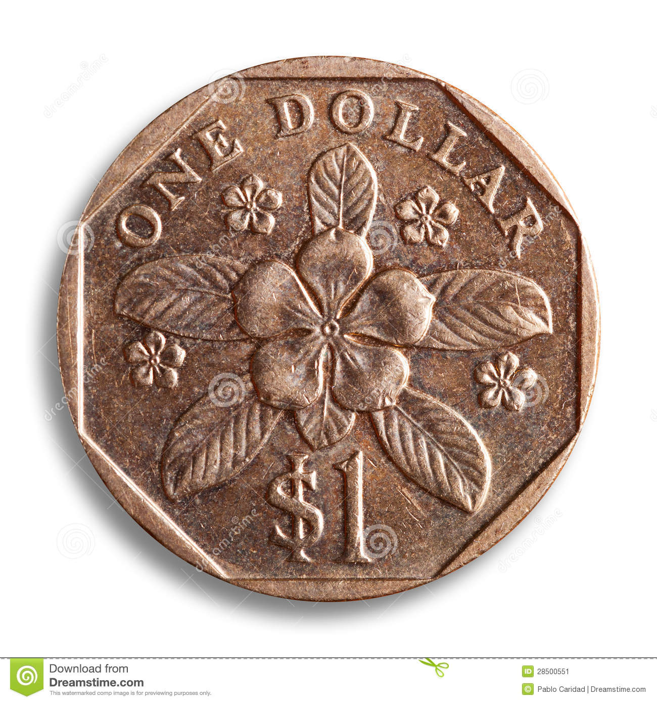 Singapore dollar, clipping path.