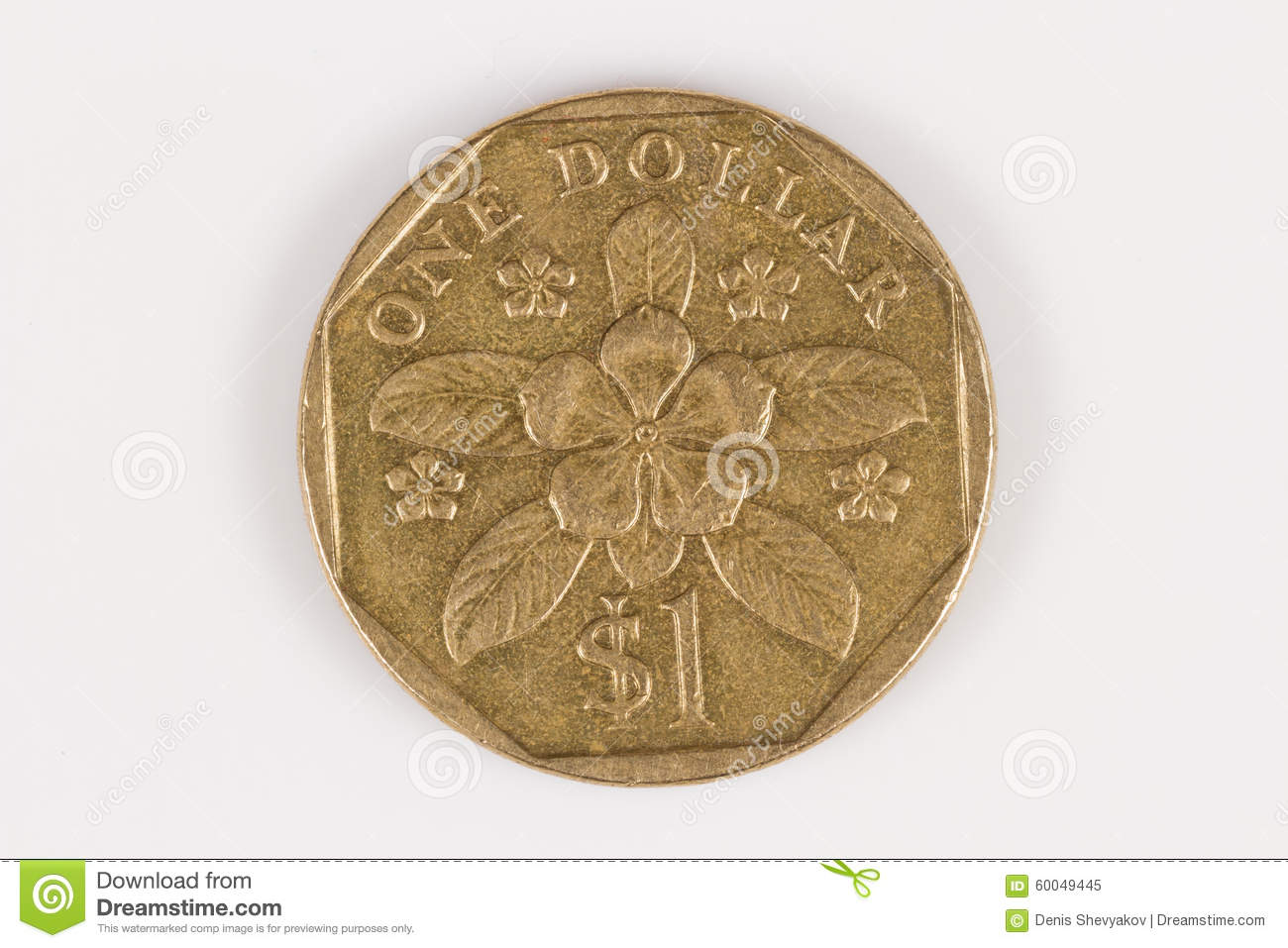 Singapore dollar stock image image of coin singapore 60049445 singapore dollar biocorpaavc