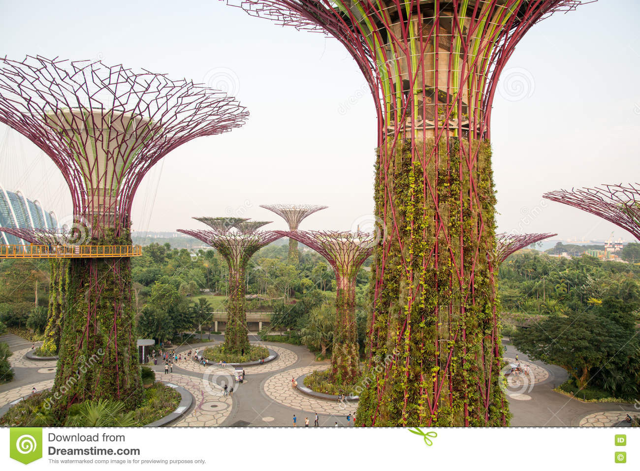 Singapore - Gardens By The Bay Stock Image - Image of gardens, area ...
