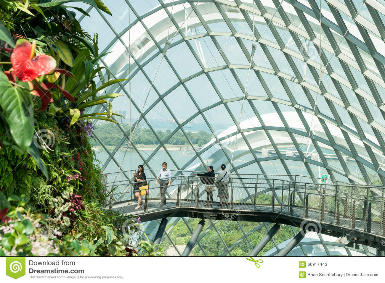 The botanical of garden by the bay in city at singapore for Botanical garden timing