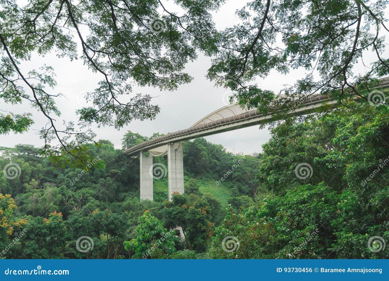 Faber Bridge