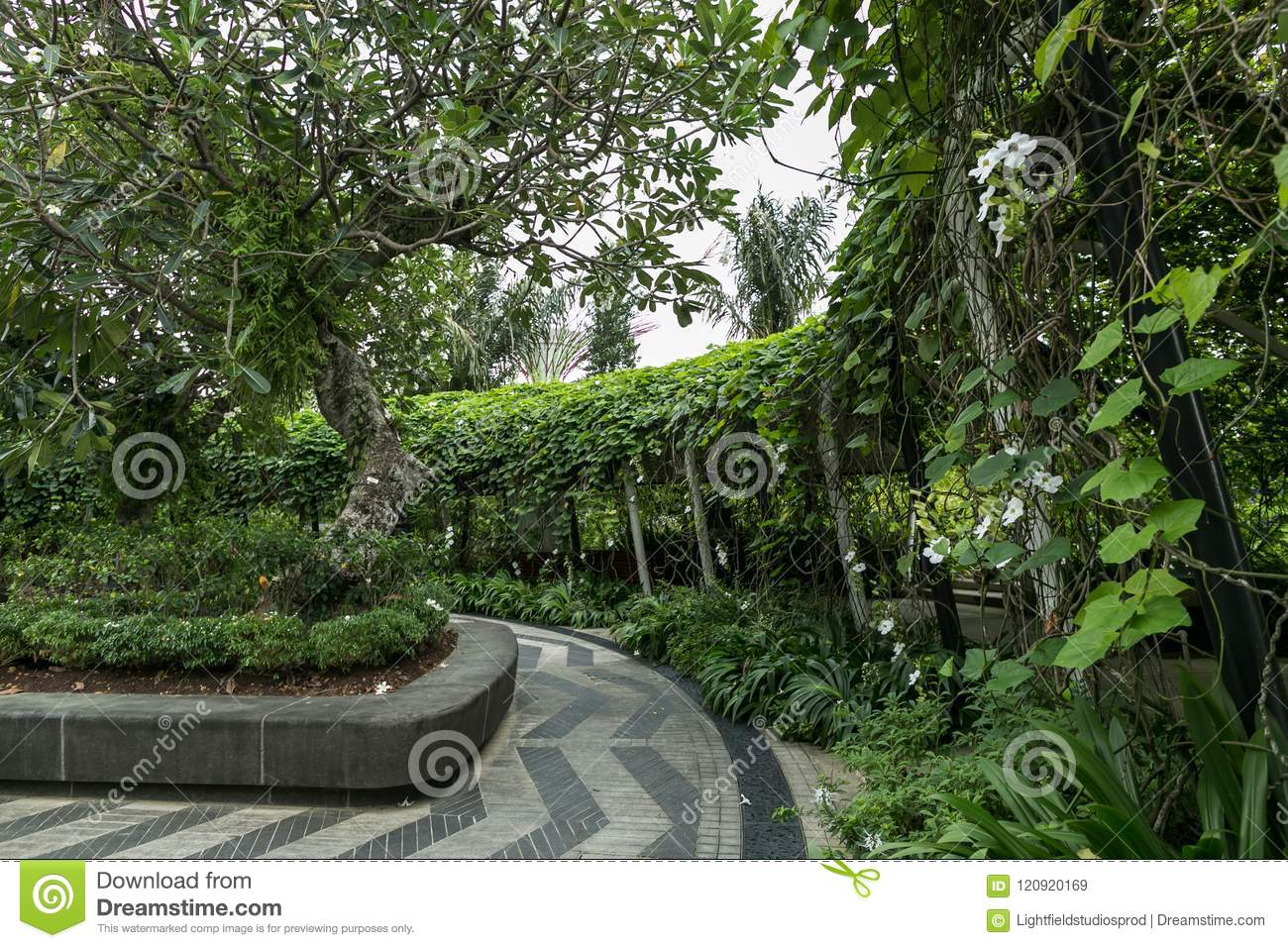 SINGAPORE - JAN 19, 2016: scenic view of path and trees