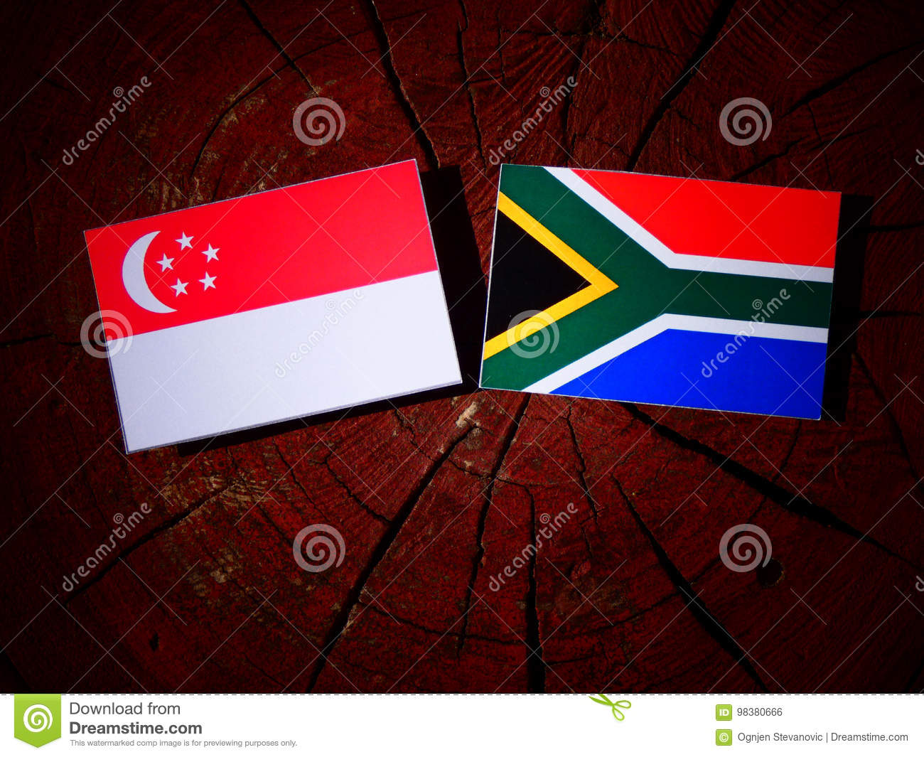 Singaporean flag with South African flag on a tree stump isolate