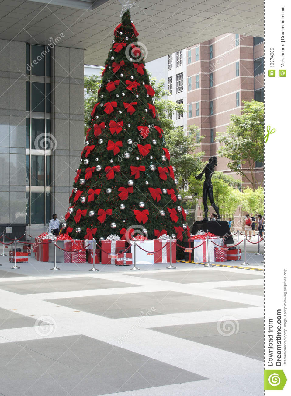editorial stock photo - Christmas Tree Shopping
