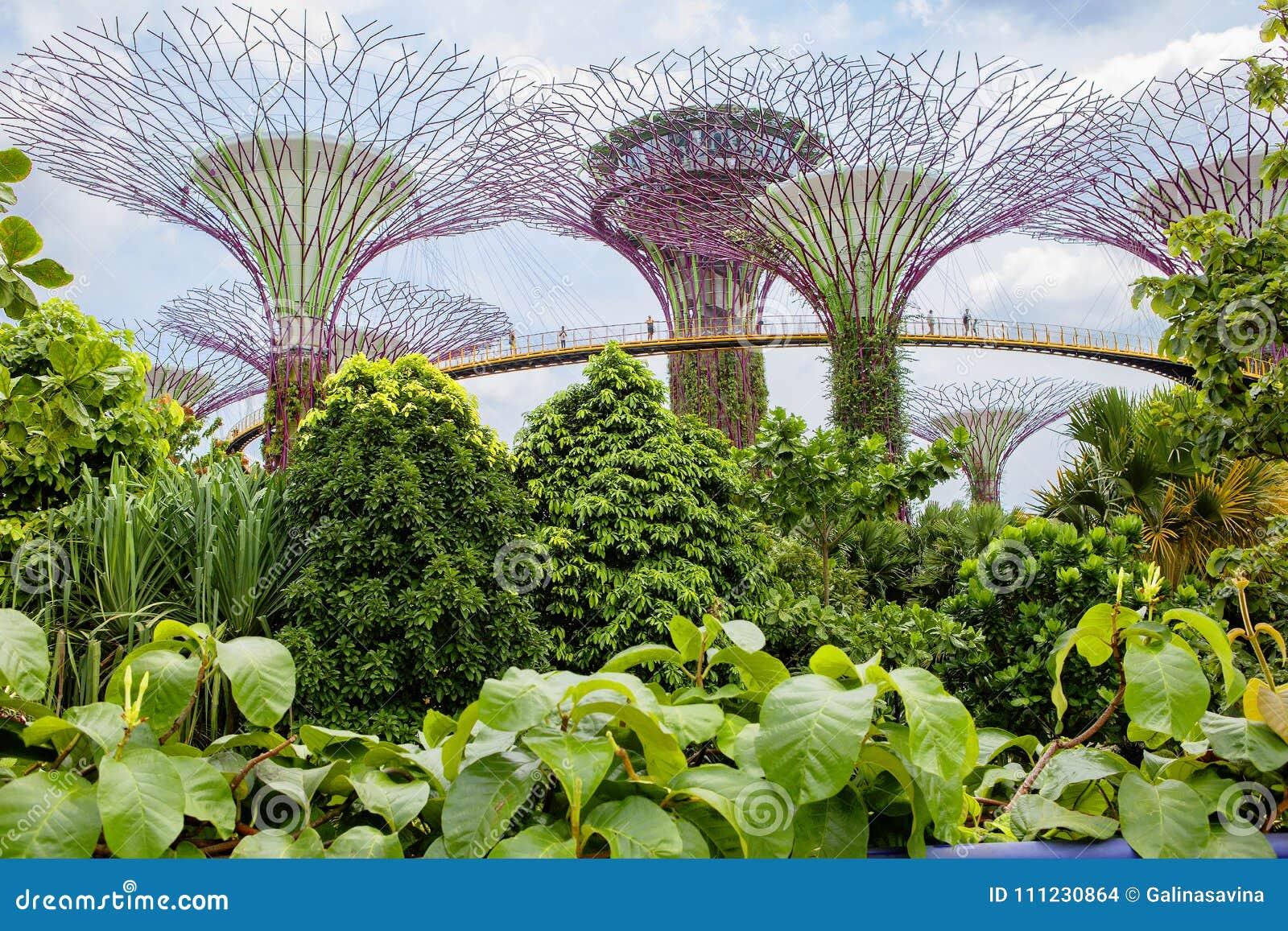 Où se brancher à Singapour