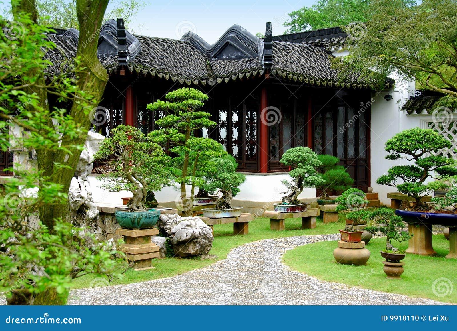 Singapur bonsais en el jard n chino foto de archivo for Chino el jardin