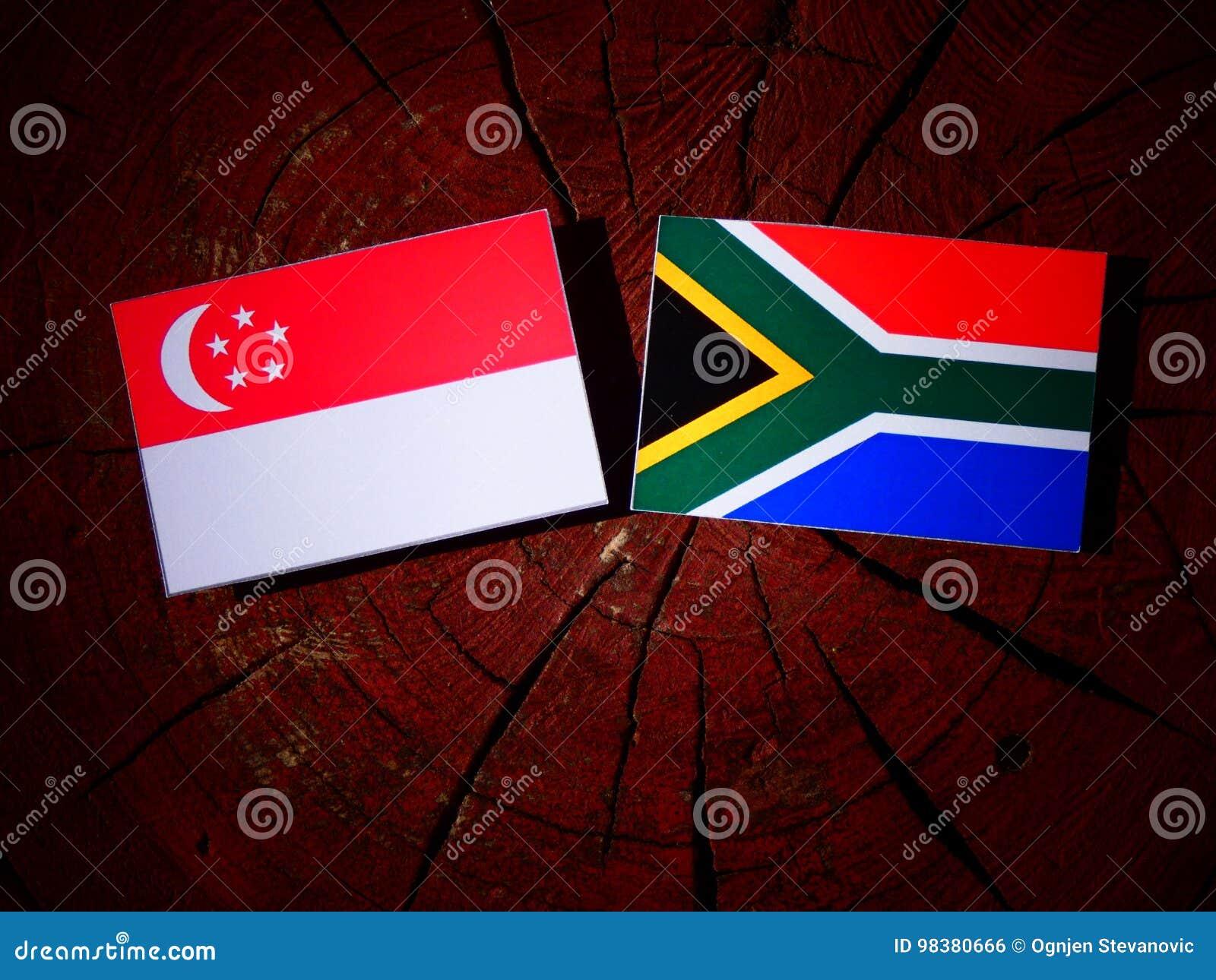 Singapurczyk flaga z południe - afrykanin flaga na drzewnym fiszorku odizolowywa