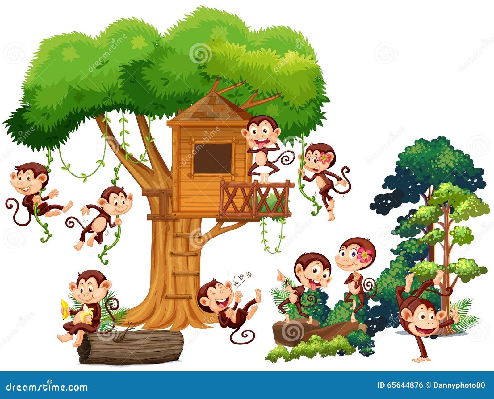 Singes jouant et montant la cabane dans un arbre