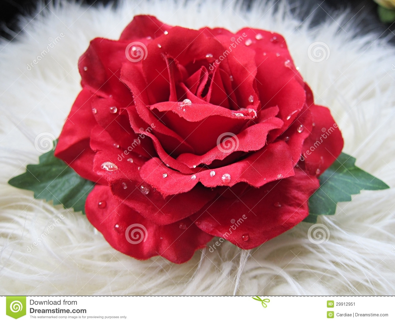 Single Red Rose Flower Stock Images: Beautiful Pretty Red Rose Flower Hair Clip Stock Image