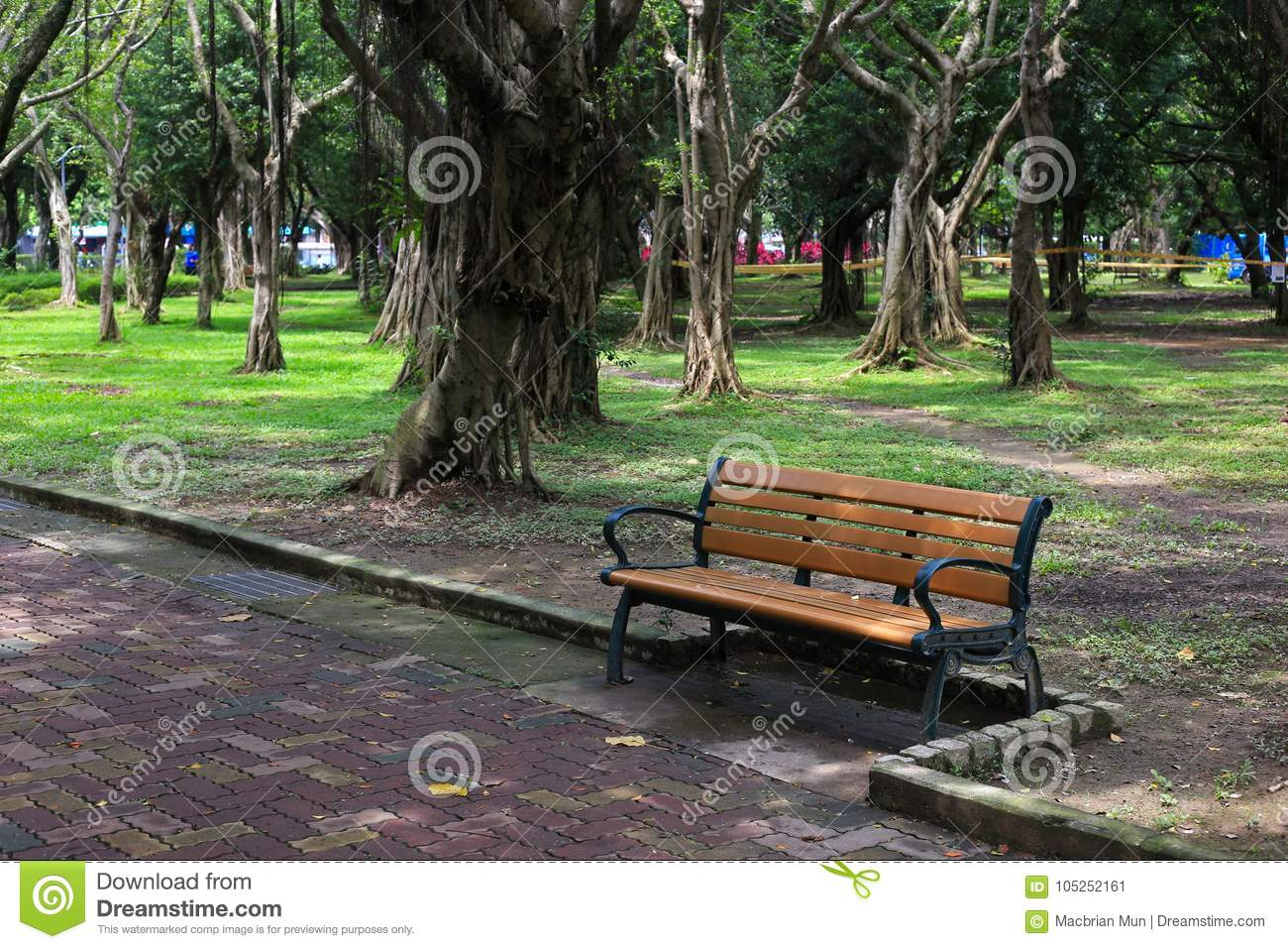 Single Bench In A Park Stock Image Image Of Tranquil 105252161