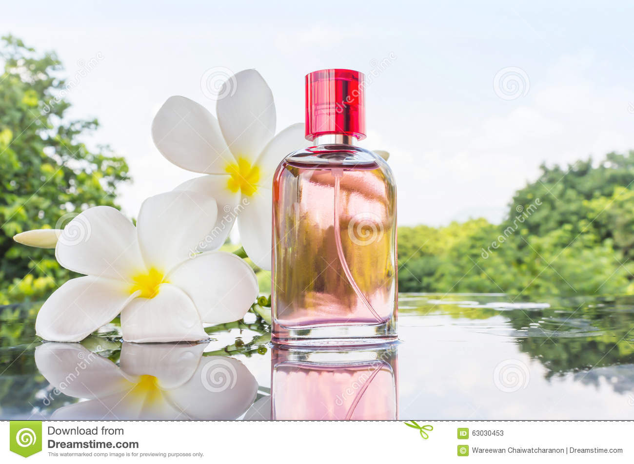 Single Bottle Of Sweet Pink Fragrant Perfume Stock Image Image Of