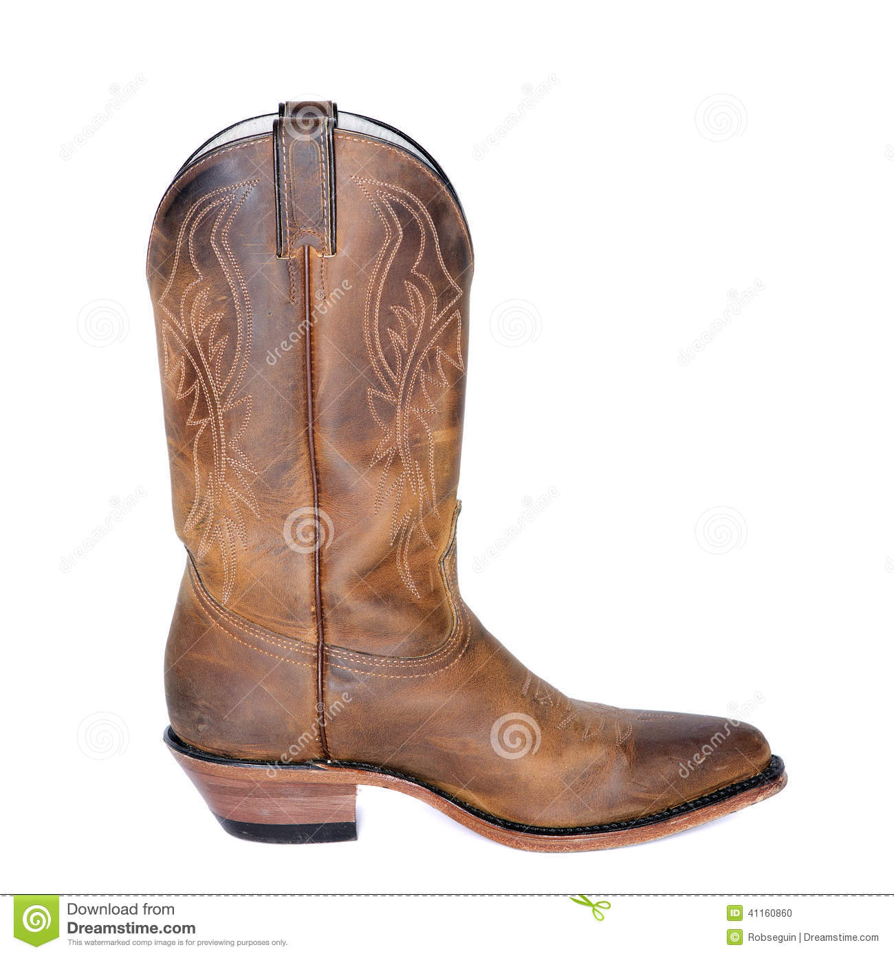 Single Brown Western Boot