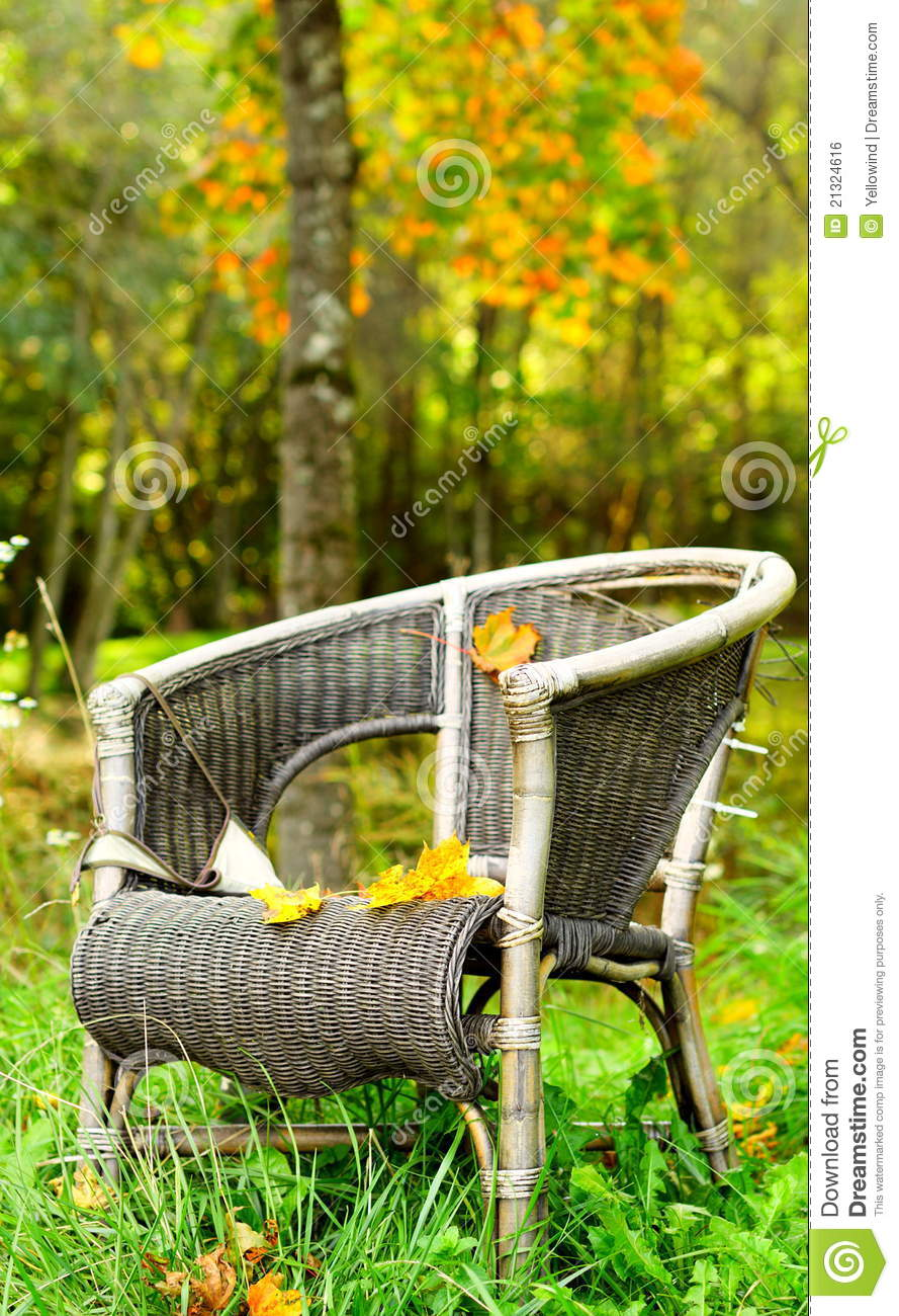 single chair autumn background in forest stock photo