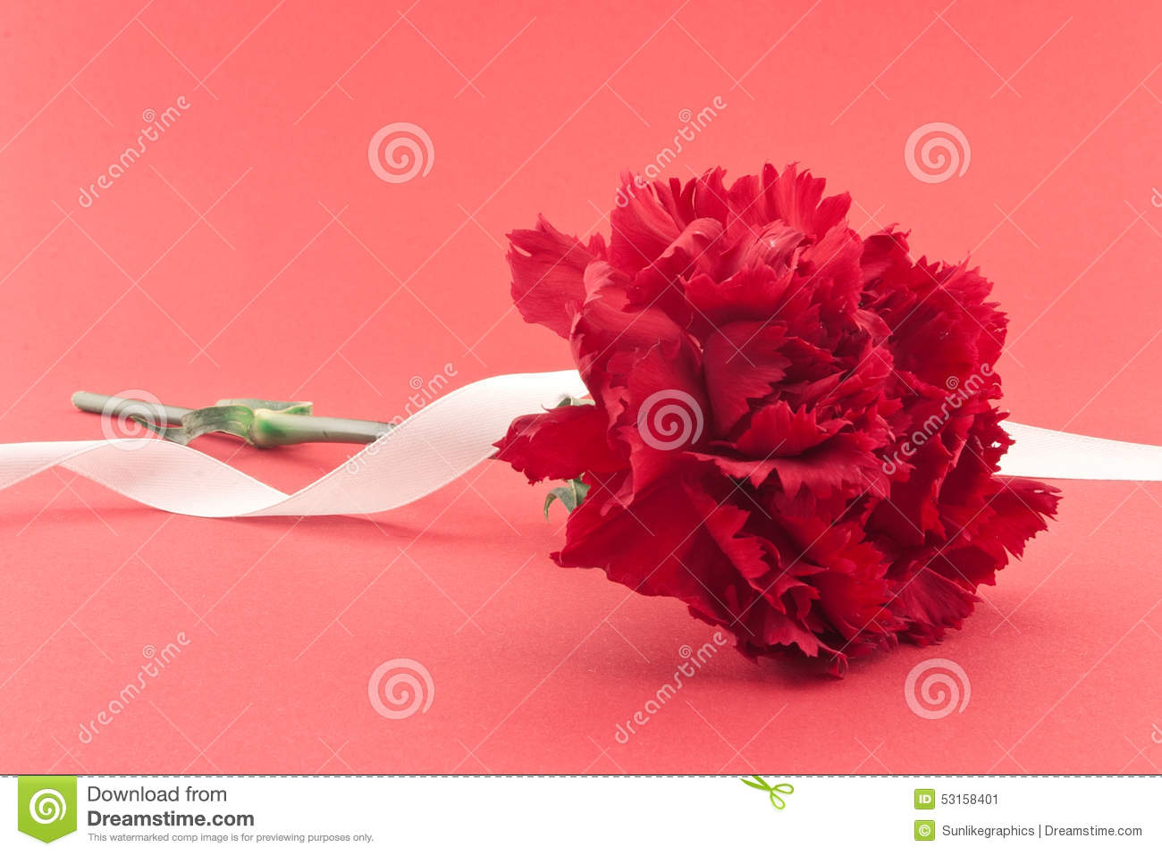 carnation divorced singles personals 9780471139768 0471139769 tax and financial planning strategies in divorce, bruce l richman 9780760738863 0760738866 central park, john s berman.