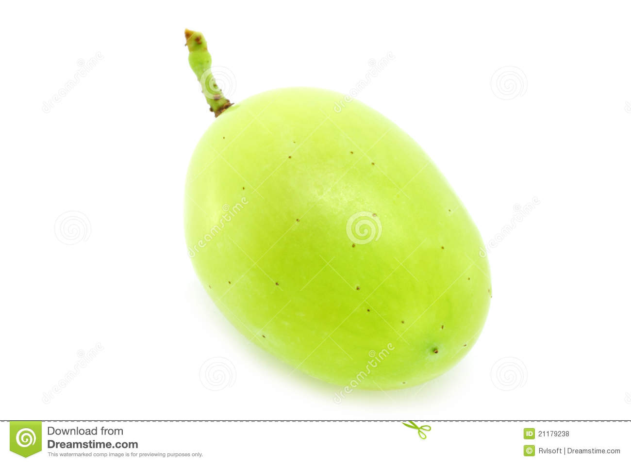 Single Green Grape Royalty Free Stock Photos Image 21179238