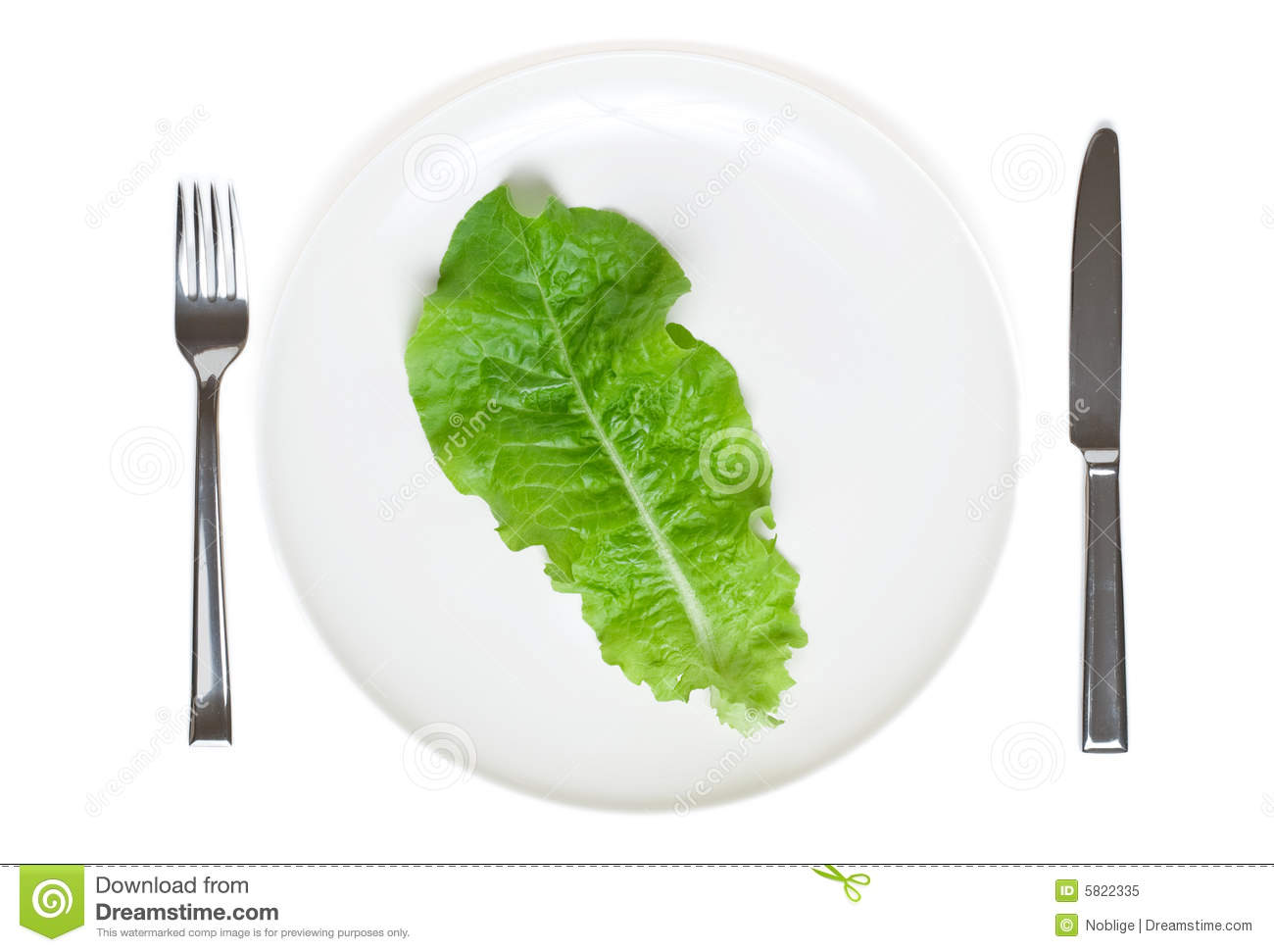 Single Lettuce Leaf On A Plate Royalty Free Stock Photo