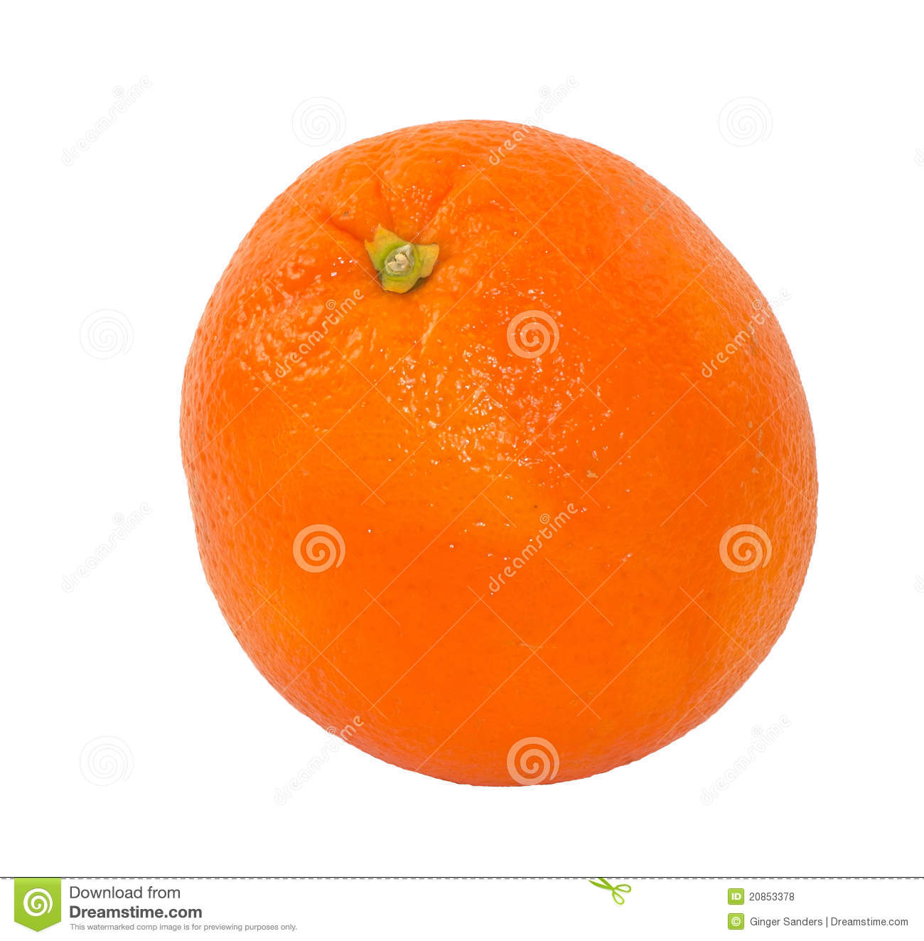 Single Navel Orange Isolated on White