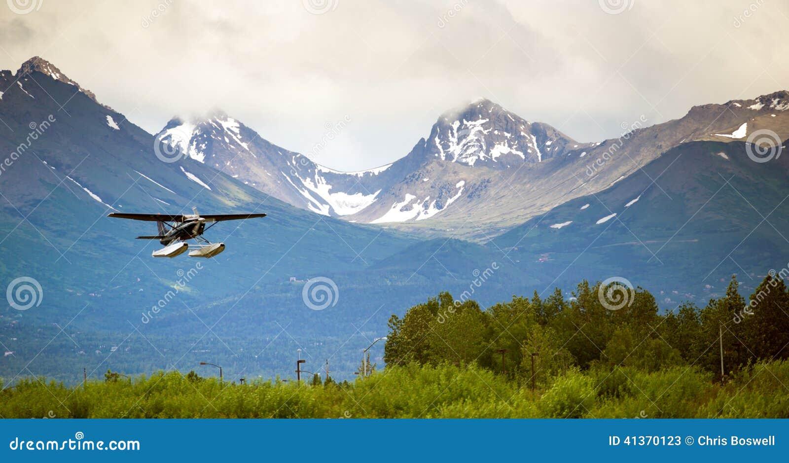 Bush Pilot Wings