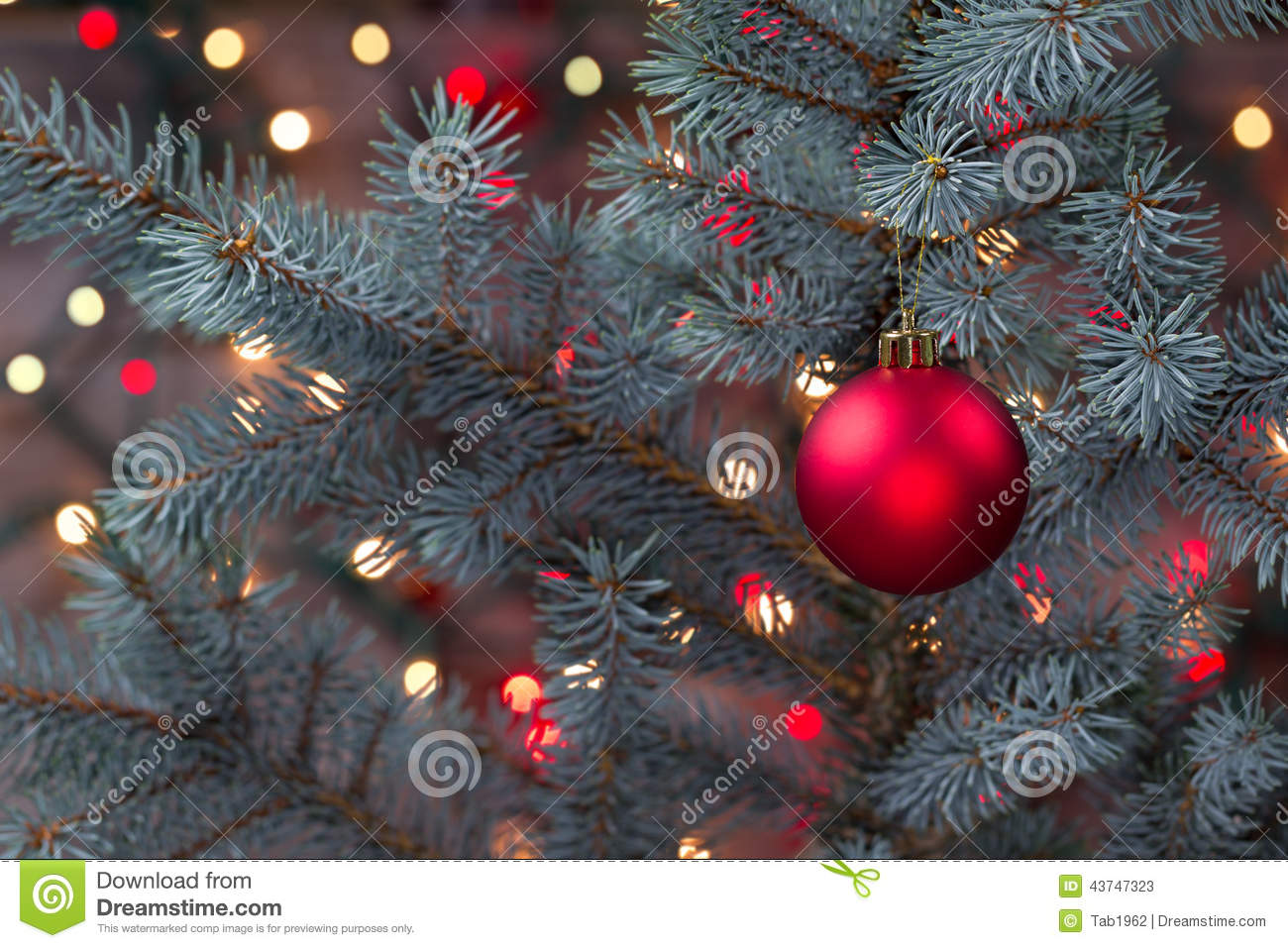 Single Red Ornament Hanging From Pine Tree With Glowing