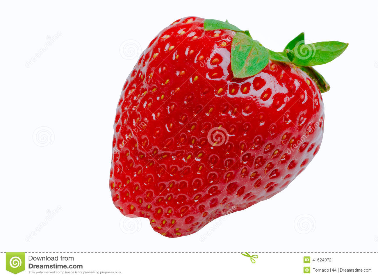 strawberry plains divorced singles dating site Our site has 1000's of members in our chat room with som, knoxville chat city  strawberry plains knoxville chat  connect with sexy singles near you .