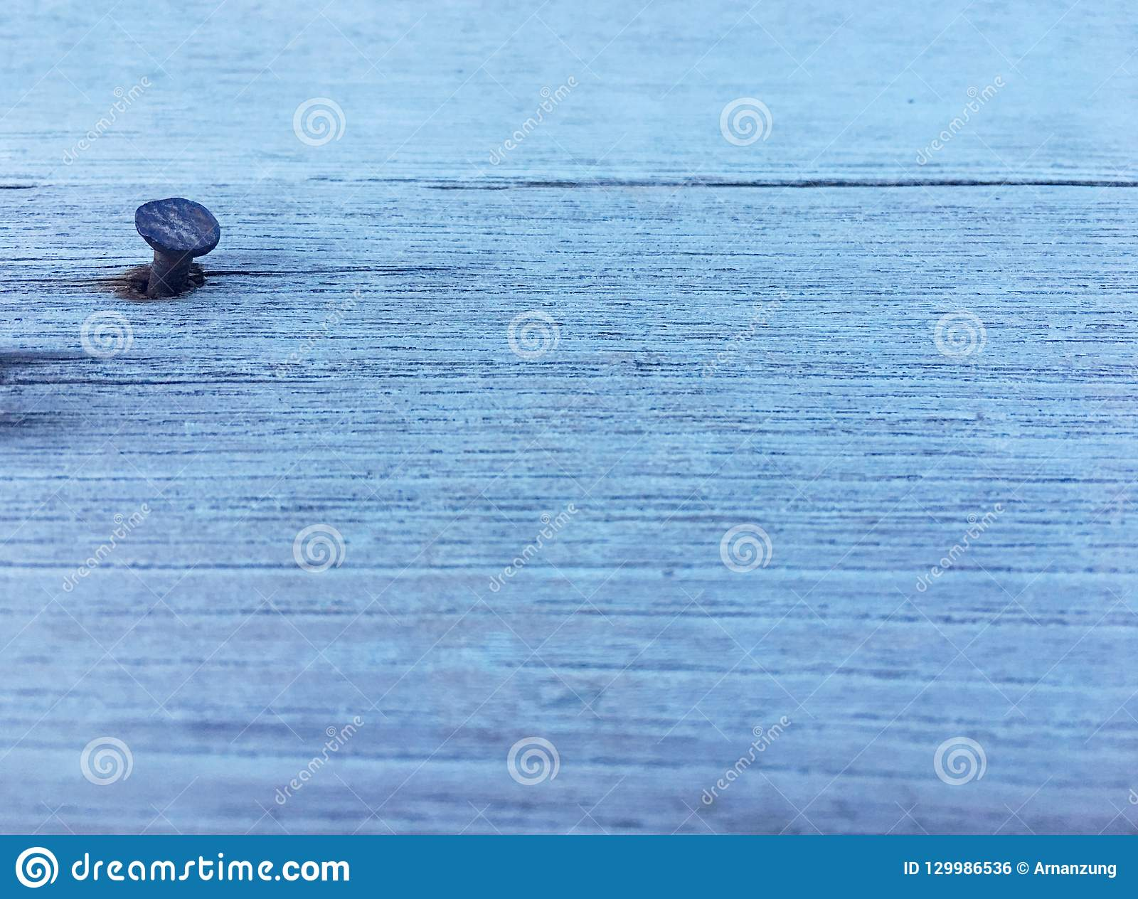 Single rust nail stick in wooden plank. Nail head pop from crack texture background