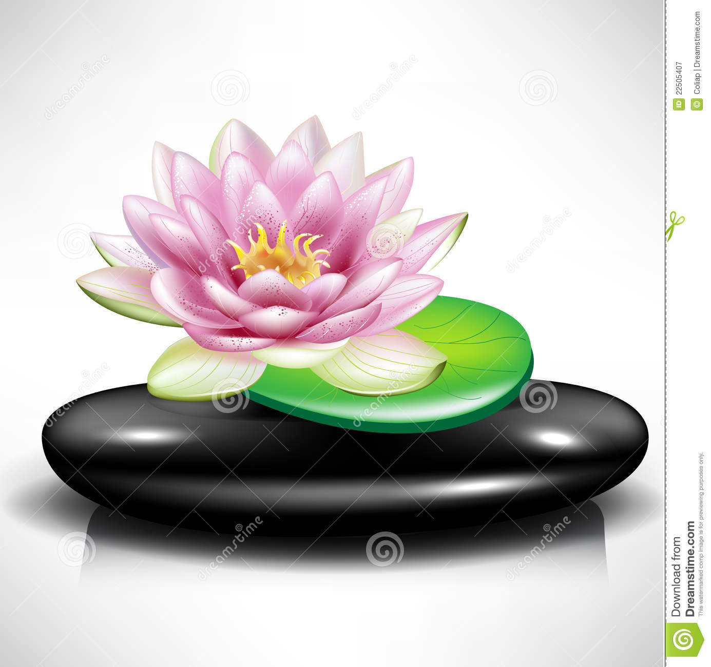 Single spa stonepebble with lotus flower stock vector single spa stonepebble with lotus flower izmirmasajfo