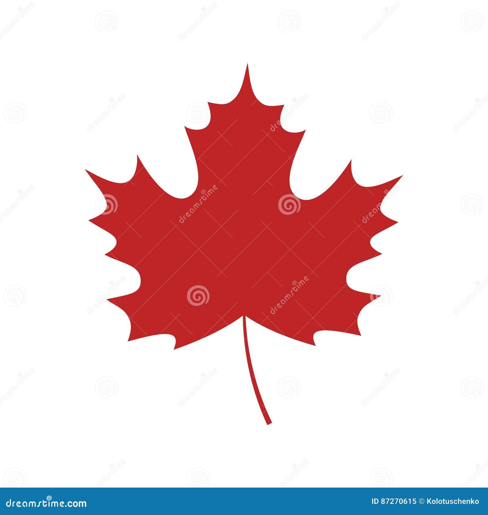 Singola foglia di acero rossa illustrazione vettoriale - Foglia canadese contorno foglia canadese ...
