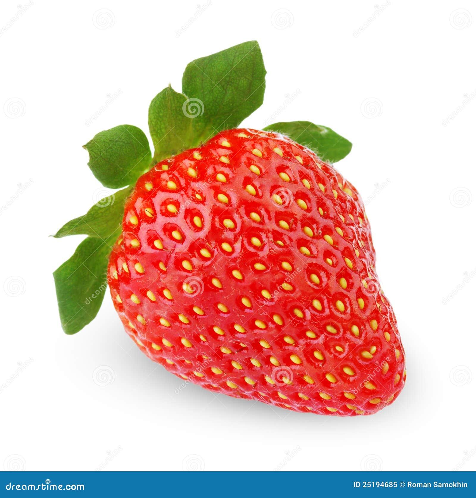 Singola frutta della fragola immagine stock immagine di - Immagine di frutta e verdura ...