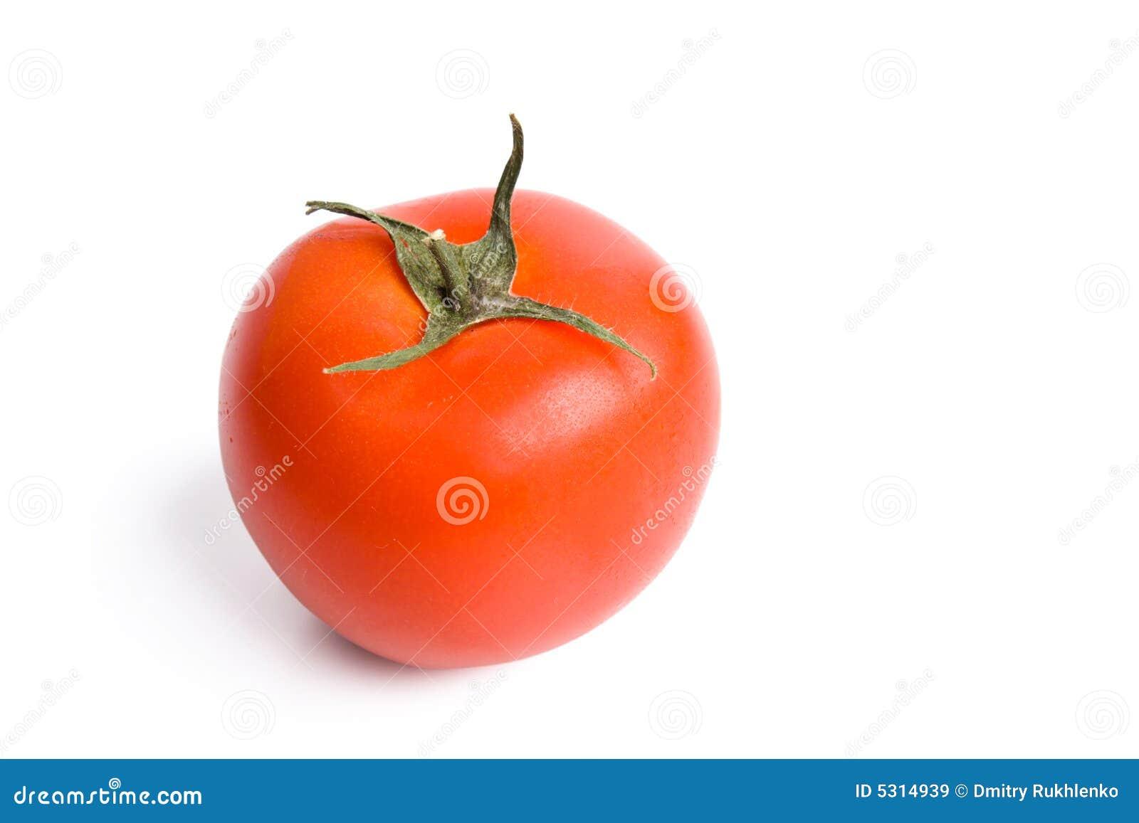 Download Singolo Pomodoro Rosso Isolato Su Bianco Immagine Stock - Immagine di vegetariano, sano: 5314939