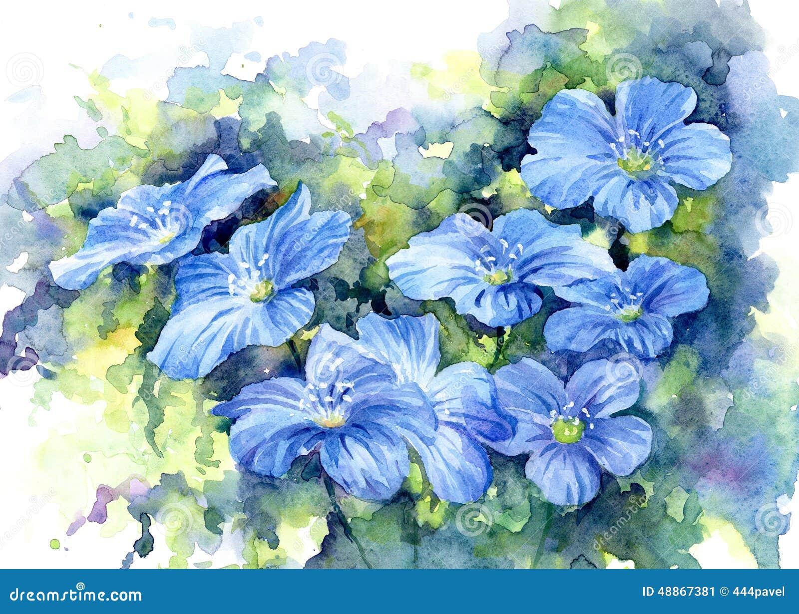 Sinii flowers, watercolor.
